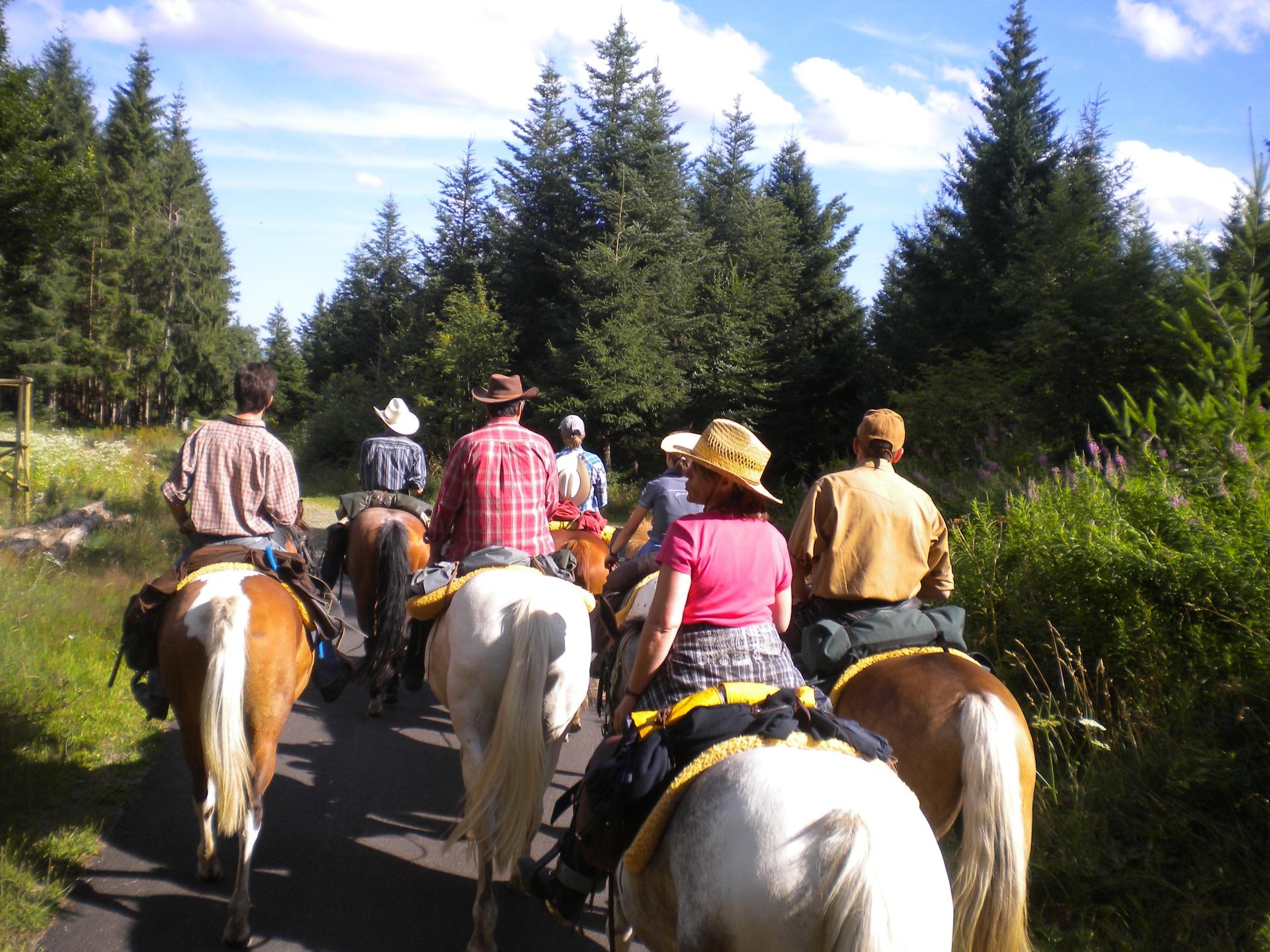 Mathew's Ranch