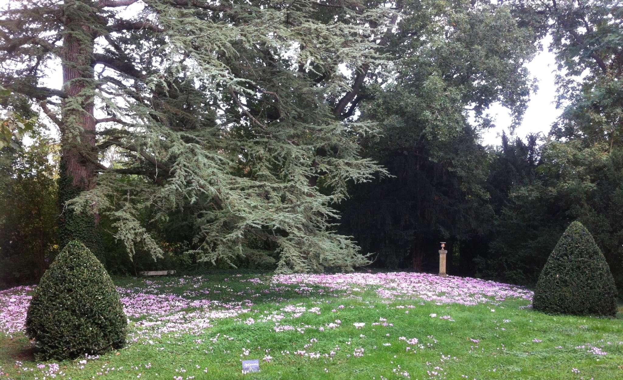 Toscane d'Auvergne - Jardins de la Croze